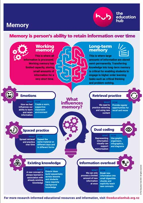 How your Memory works infographic