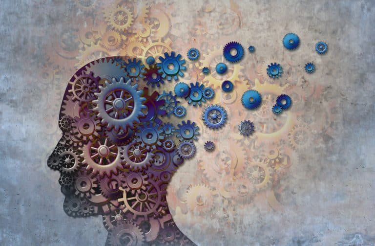 An introduction to cognitive load theory