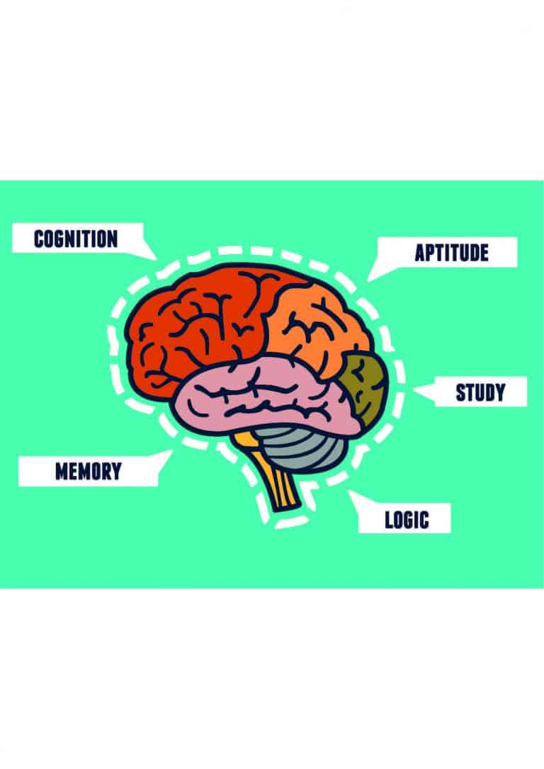 The role of memory, knowledge and understanding in learning